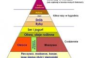 piramida0001_660x600